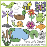 Spring Pond Life Clipart