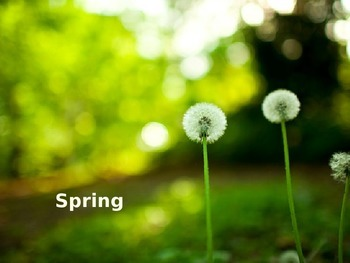 Spring Power Point