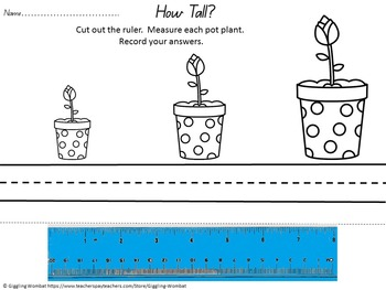 Spring Pre K Math and Literacy