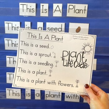 Spring Predictable Sight Word Sentence Pocket Charts (10 Pocket Charts)