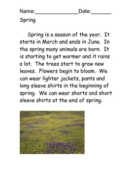 Spring Reading Comprehension Packet