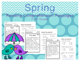 Spring Reading Comprehension Passages First Grade