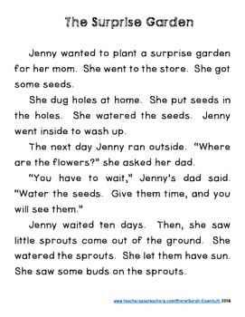 Spring Reading Comprehension Second Grade - The Surprise Garden