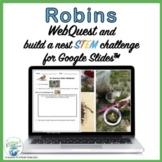 Spring Robin WebQuest & Build a Nest STEM Challenge for Us