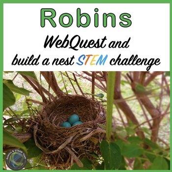 Spring: Robin WebQuest and Build a Bird Nest STEM Challenge