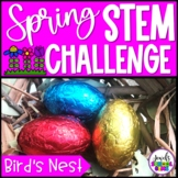 Spring STEM Activities (Bird's Nest Spring STEM Challenge)