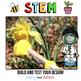 Spring STEM Challenge: Pollination - NGSS Aligned