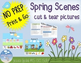 Spring Scenes Listening to Language Activity