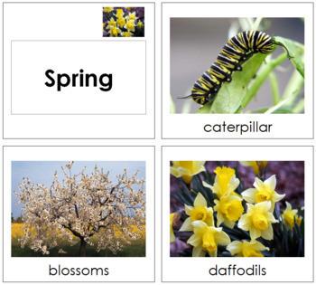 Spring Season Cards  - Toddler