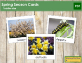 Spring Season Cards  - Toddler