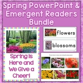 Spring Season PowerPoint & Emergent Reader Bundle
