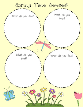Spring Senses Graphic Organizer
