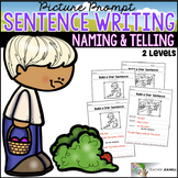 Spring Sentence Structure - Naming and Telling Parts of a