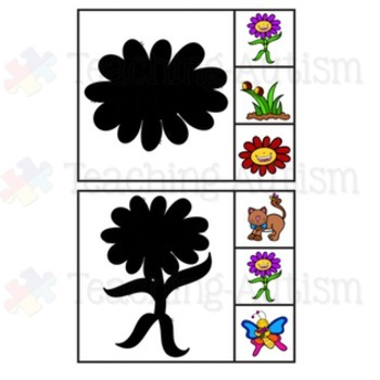 Spring Shadow Matching Task Cards