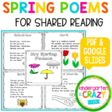 Spring Shared Reading Poems - Distance Learning