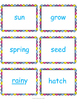 Spring Short and Long Vowel Sort