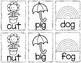 Spring Sight Word & CVC Word Games (Editable)