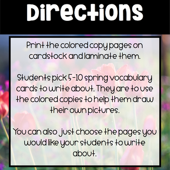Spring ~ Student Choice Spring Words Book