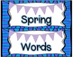 Spring/Summer Vocabulary Word Wall Cards with REAL photos!