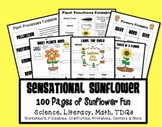 Spring Sunflowers: Non-Fiction Science, Math, Literacy & More
