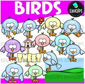 Bashful Birds Clip Art Bundle {Educlips Clipart}