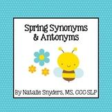 Spring Synonym and Antonym Activities