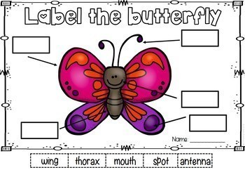 Label the Picture Worksheets | Spring Literacy Activities