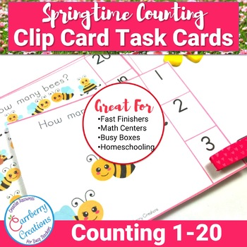 Spring Math Center for Counting