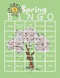 Spring Themed ELA Bingo