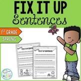 Spring Editing Sentences: First Grade, Capitalization, Pun