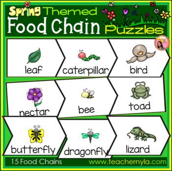Garden Food Chain Puzzles