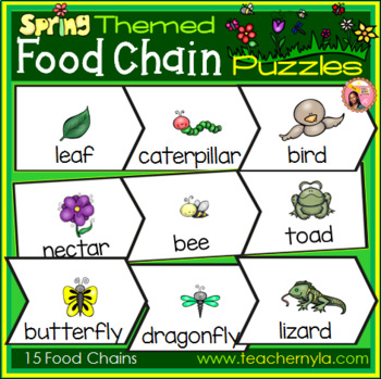Spring Themed Food Chain Puzzles