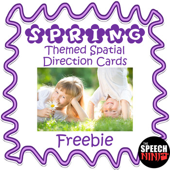 Spring Themed Spatial Direction Cards Freebie