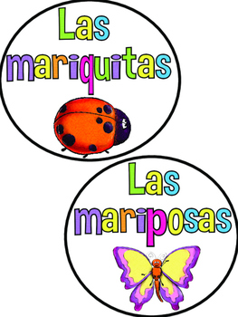 Spring Themed Unit in Spanish