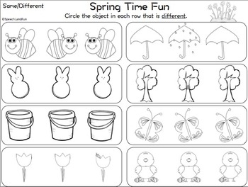 Spring Time Fun: Same/Different Concept