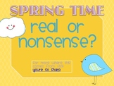 Spring Time Real or Nonsense Words