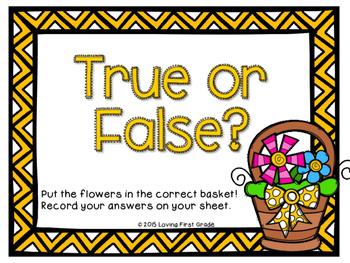 Spring True or False Center