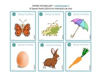 Spring Vocabulary Companion and Worksheets