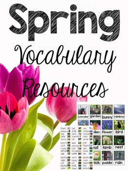Spring Vocabulary Resources