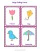 Spring Vocabulary and Bingo