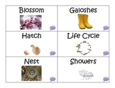 Spring Vocabulary and Idiom Packet