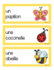 Spring Vocabulary in French (Spring, Easter, St-Patrick)