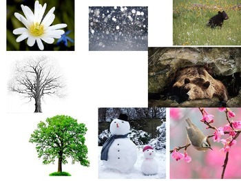 Spring- WIND