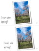 Spring Weather Emergent Reader and Comprehension Worksheet