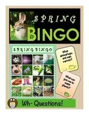 Spring WH Question Photo Bingo (2 Ways to Play)