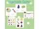 Spring Word Cards and Word Walls {in English and Spanish} GIANT BUNDLE