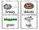 Spring Word Wall - Nouns, Verbs, and Adjectives!