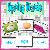 Spring Activities Writing Photo Cards (Kindergarten and Fi
