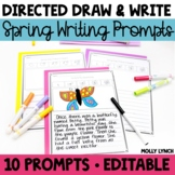 Spring Writing - Draw It! Write It! Read It! Spring Journal Prompts