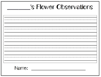 Spring Writing & Science Activity for Lucy Calkins Writing Like a Scientist
